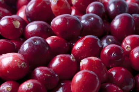 LO-RES-cranberries-101848117-e1294075776465