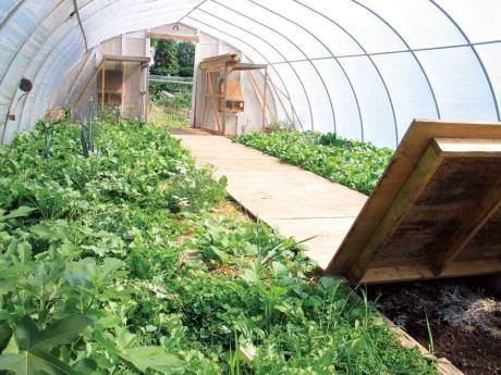 Hoop House Floor