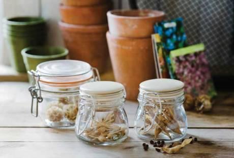 seed-jars jpg